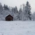 Efter tö kommer mera snö!